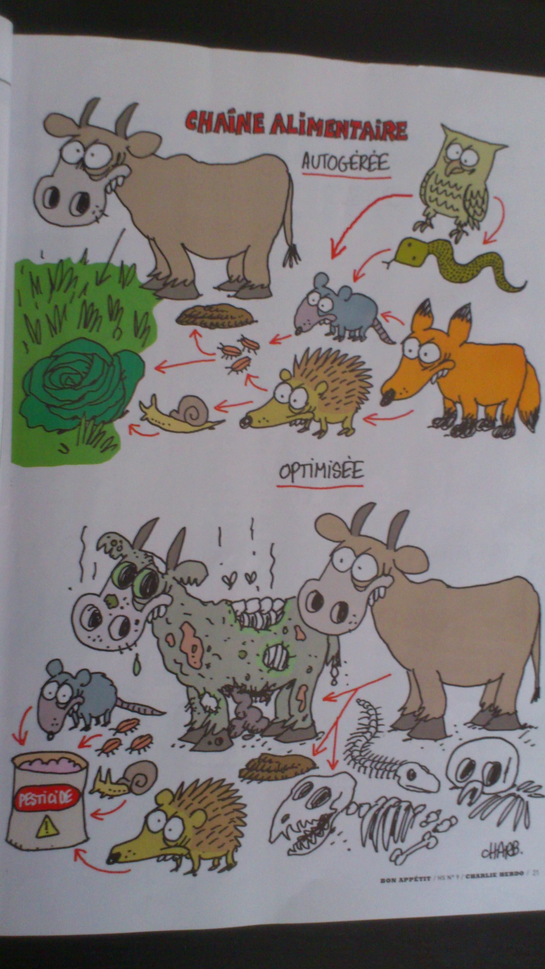 Caricature malbouffe
